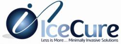 IceCure Medical Ltd.